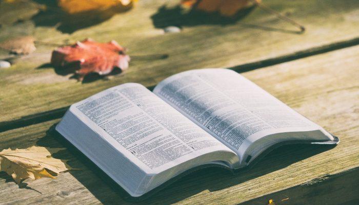 bible-1868070_1920